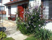 Kis ház