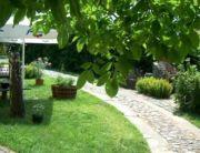 Szőlő Vendégház kertje
