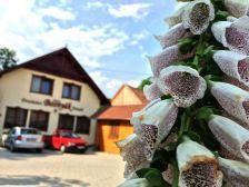 Bosnyák Panzió Székelyudvarhely szálláshely