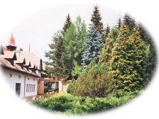 Királyrét Hotel Szokolya szálláshely