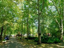 Park Hotel Balatonlelle szálláshely