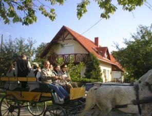 Kőröshegyi Falusi Vendégház szálláshely