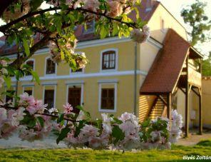 Mindszenty Ifjúsági Ház Zalaegerszeg szálláshely