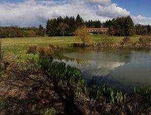 Őrségi Patakparti Alpaka Panzió profil képe - Kisrákos