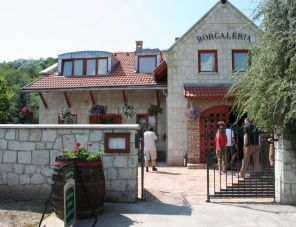 Borgaléria profil képe - Tokaj