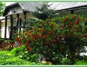 Fényespusztai Pihenőház profil képe - Parádsasvár