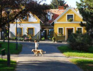 Kóczián Pihenőház profil képe - Kőszeg