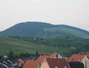 Mandula Vendégház profil képe - Eger