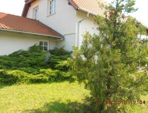 Napocska Vendégház profil képe - Tés