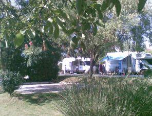 Pálma Camping profil képe - Cserszegtomaj