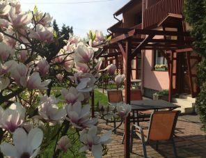 RT Home Vendégház profil képe - Szombathely