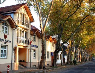 Hotel Platán*** profil képe - Székesfehérvár