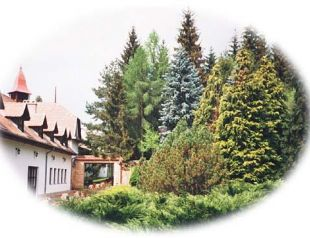 Királyrét Hotel profil képe - Szokolya