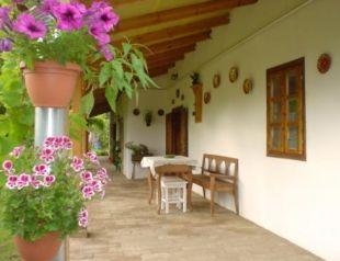 Tornácos parasztház profil képe - Tiszaszentimre
