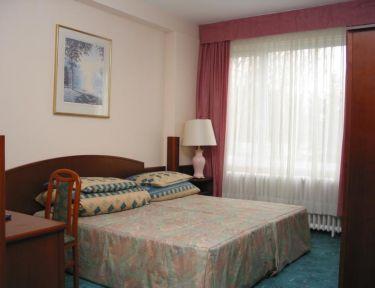 Hotel Ametyst*** profil képe - Mezőkövesd