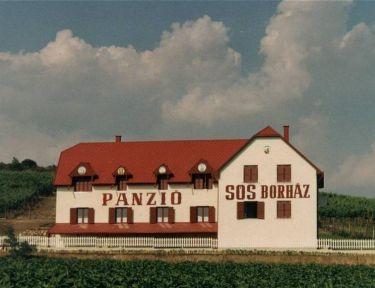 Sós Borház Panzió profil képe - Mezőzombor