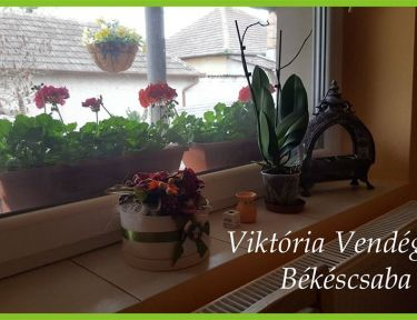 Viktória Vendégház profil képe - Békéscsaba