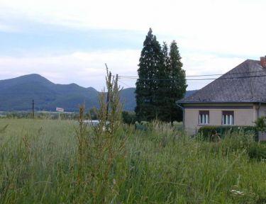Zempléni Vadvirág Vendégház profil képe - Vilyvitány