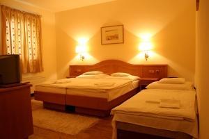 Gastland M1 Hotel-Páty