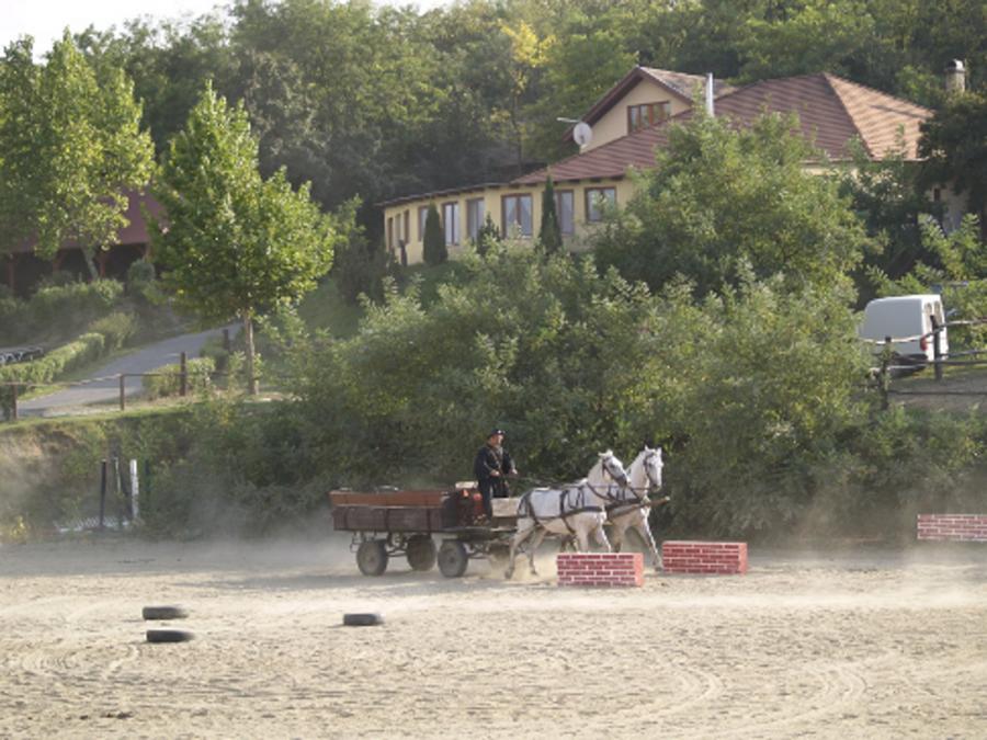 Stampok Lovarda és Szabadidőpark-Dunabogdány